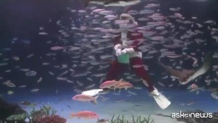 Babbo Natale tra i pesci all'Acquarium di Tokyo