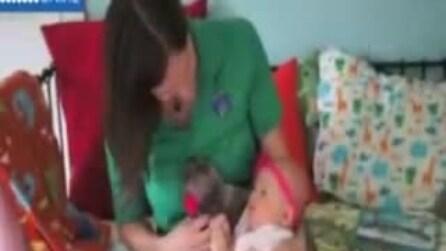 La bimba e il bradipo Daisy, due amiche inseparabili