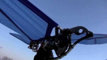 L'uccello volante: il robot che batte le ali e plana in cielo