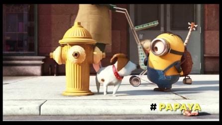 "Minions, la mini-clip ""Papaya"""