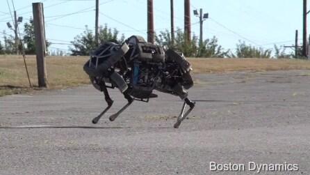 Ecco il robot a quattro zampe in grado di galoppare