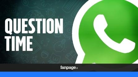 Question Time, le video risposte alle vostre domande su WhatsApp Messenger