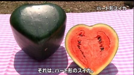 Il cocomero a forma di cuore