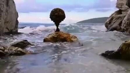 Come trovare forme di equilibrio massimo: un video incredibile