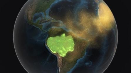 """Il Sahara """"nutre"""" l'Amazzonia, sabbia vitale per la foresta pluviale sudamericana"""