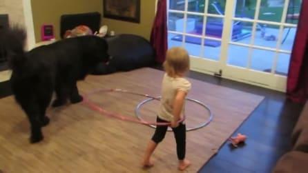La bambina che insegna al cane come fare l'Hula Hoop