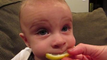 Prova il limone per la prima volta, la sua reazione è un vero spettacolo