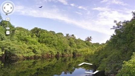 Tutti possono visitare la Foresta Amazzonica: tra fiumi e piante selvatiche con Google Street View
