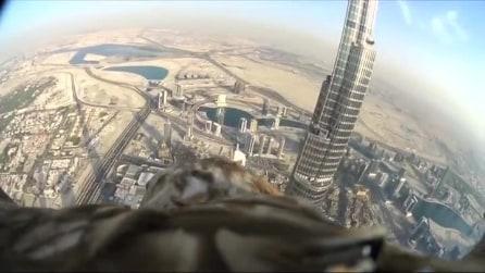 Volando come un'aquila sopra Dubai: una vista mozzafiato