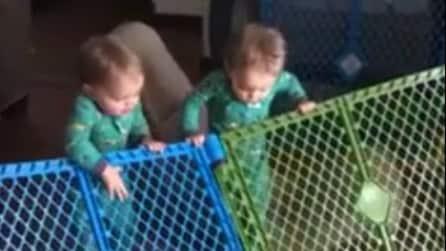 La grande fuga dei due bambini