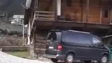 Anziana accarezza un cane randagio, la sua affettuosa reazione