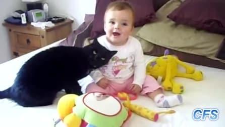 I gatti amano i bambini: le scene più esilaranti