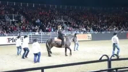 Quando vedrete cosa è capace di fare questo cavallo ballerino resterete senza parole