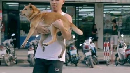 Raccoglie cani randagi dalla strada e quello che fa per loro è bellissimo