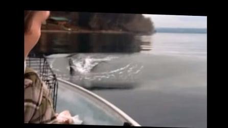 Sono in barca a pescare quando vedono qualcosa di incredibile