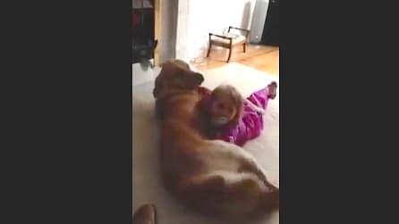 La piccola Maddy e il suo cane Paddy si fanno le coccole. Infinita dolcezza