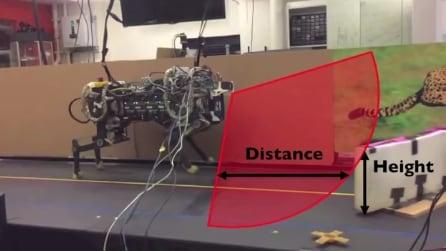 L'evoluzione del robot, ora non corre solo: guardate cosa fa quando trova un ostacolo