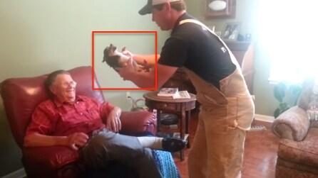 Guardate cosa fa questo cane appena viene preso in braccio: troppo divertente