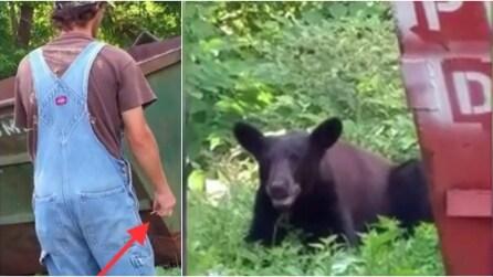 Dà da mangiare all'orso come fosse il suo cane: incredibile!