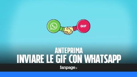 WhatsApp: in arrivo l'aggiornamento per inviare le GIF