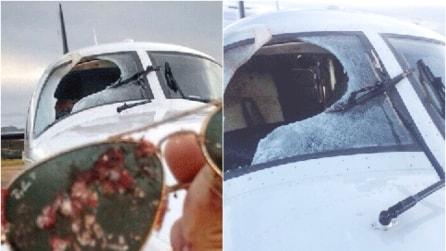 Si scontrano in volo con un avvoltoio: quello che succede all'interno dell'aereo è disgustoso