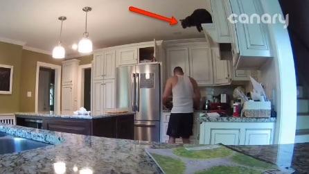 Sta preparando la cena ma ecco che accade qualcosa di inaspettato