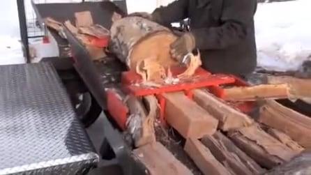 Mette un tronco su questa macchina e guardate come lo riduce: impressionante!