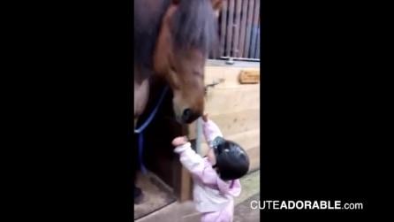"""""""Saluta il cavallo"""", ma la piccola fa di più: la sua tenerezza ti conquisterà"""