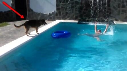 Il padrone sta per annegare e guardate il cane come reagisce
