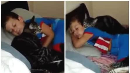 Il bimbo torna dal campo estivo e la reazione del gatto è sorprendente