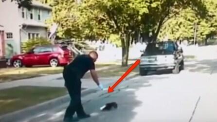 """La puzzola si è incastrata in un vasetto di yogurt e il poliziotto """"coraggioso"""" reagisce così"""