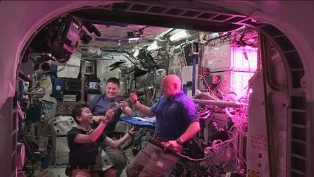 Ecco la lattuga coltivata in orbita: la Nasa prepara così le missioni di lunga durata
