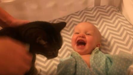 La reazione di questa neonata alla vista del gatto vi scalderà il cuore