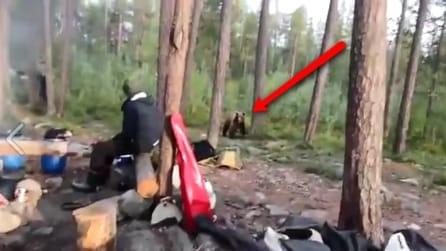 L'orso si avvicina ai turisti ma loro trovano un modo molto originale per mandarlo via