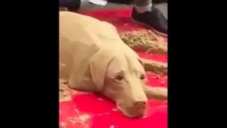 Osservatelo bene, sembra un cane vero? La realtà è un'altra