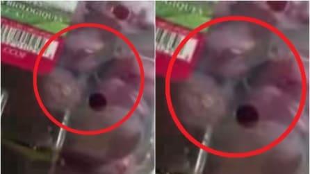 Compra una confezione d'uva al supermercato, quello che ci trova dentro è terribile