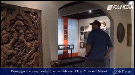 Esplorando la sessualità nel Museo di arte erotica di Miami: tra peni giganti e sexy centauri