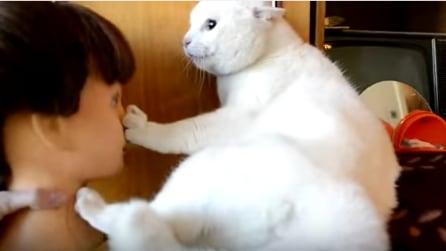 La padrona avvicina il manichino al suo gatto e sentite il verso che fa