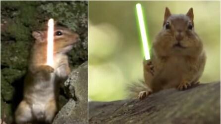 L'esilarante combattimento tra scoiattoli armati di spada laser