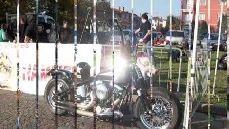 castagnata bikers di ciserano 2015 1° video