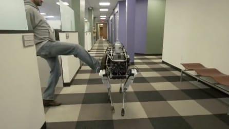 Rifila un calcione al robot: ma guardate dopo cosa succede