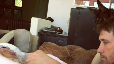 Skyler Eva divisa tra papà Brian e il bassotto Piero: i video di Elisabetta Canalis
