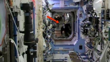 """Una presenza """"inquietante"""" a bordo dell'ISS, la Stazione Spaziale Internazionale"""