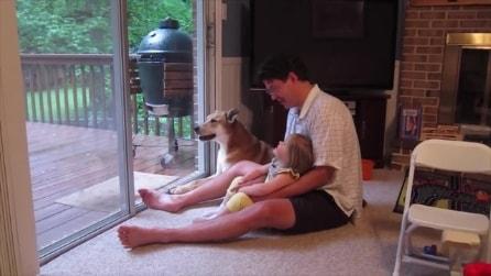 Il cane imita papà e figlia: la scena bellissima
