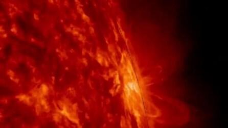 Centinaia di eruzioni solari viste da vicino: lo spettacolo è mozzafiato