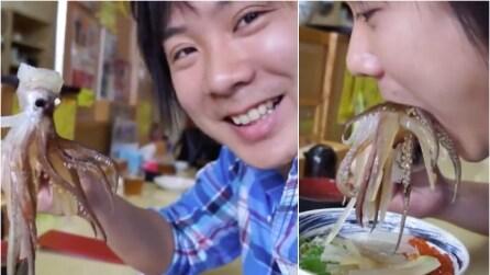 Azzanna un calamaro crudo che sembra ancora vivo, voi lo mangereste mai così?