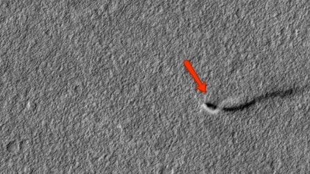 """Marte, il """"serpente fantasma"""" che anni fa incuriosì il mondo"""