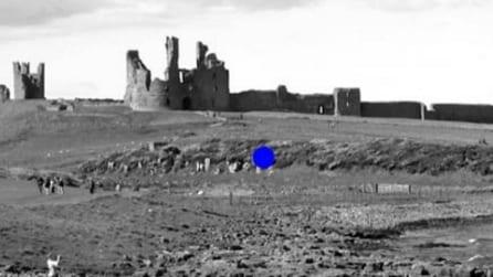 Fissano attentamente il punto blu nell'immagine: ecco cosa succede qualche secondo dopo