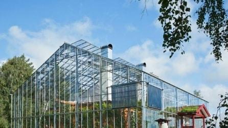 NaturHouse, la casa sotto la serra dove non pagherete più i riscaldamenti