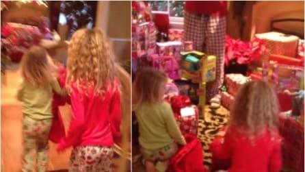 C'è una sorpresa sotto l'albero, le bambine corrono incuriosite: ecco di cosa si tratta